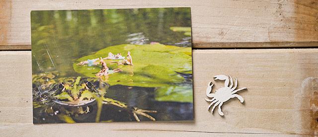 Postkarte Kleine Badende, Badekult,Froschweiher