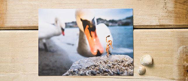 Postkarte  Badekult, luzern